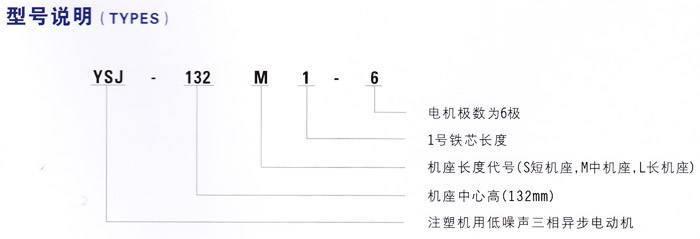 东莞注塑电机型号说明
