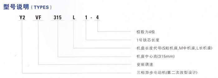 变频调速三相异步威尼斯3775网站型号说明